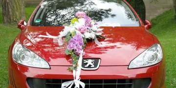 Brautkleider, Trauringe, Hochzeitsfotos Oberfranken