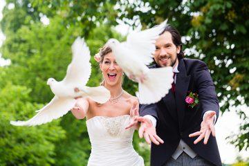 Hochzeitstauben Oberfranken